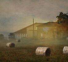 The Farm House by Irene  Burdell