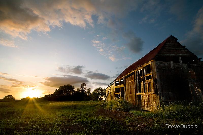 Fenland Summer Solstice by SteveDubois