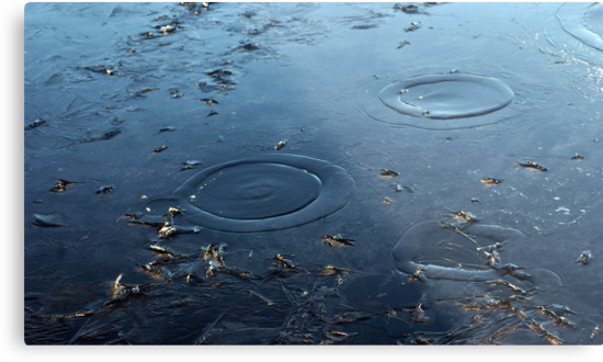 first ice with circles of water on surface on winter day in park by Anton Oparin