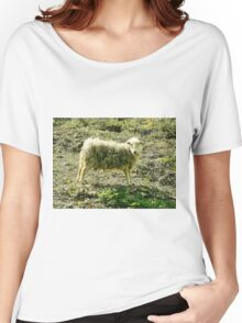 Sheep of Dover Women's Relaxed Fit T-Shirt
