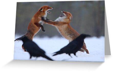 Power struggle by Remo Savisaar
