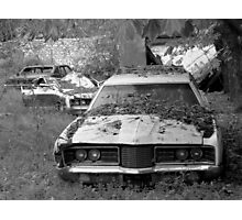 Car cemetery Photographic Print