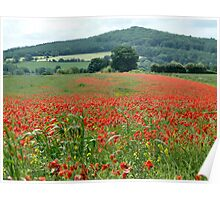 The Poppy Field Poster