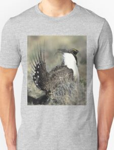 Beautiful Grouse