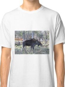 Male moose in the woods Classic T-Shirt