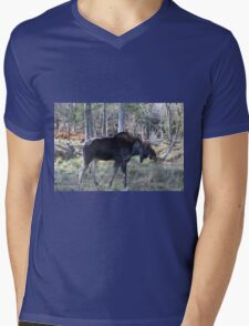 Male moose in the woods Mens V-Neck T-Shirt