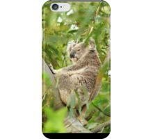 Koala Time - iPhone Cover iPhone Case/Skin