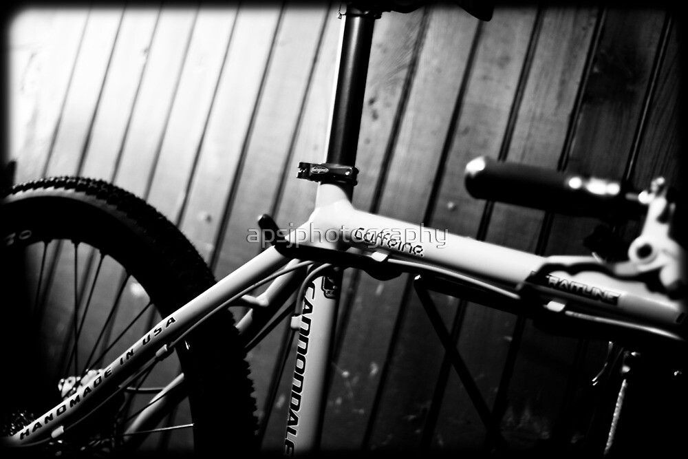 Cannondale by apsjphotography