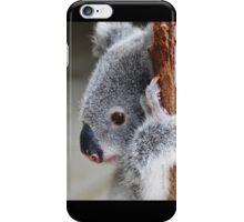 Koala Rescue Baby iPhone Case/Skin