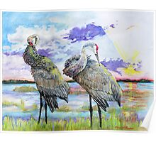 Lake Olivia at Sunset with Sandhill Cranes Poster