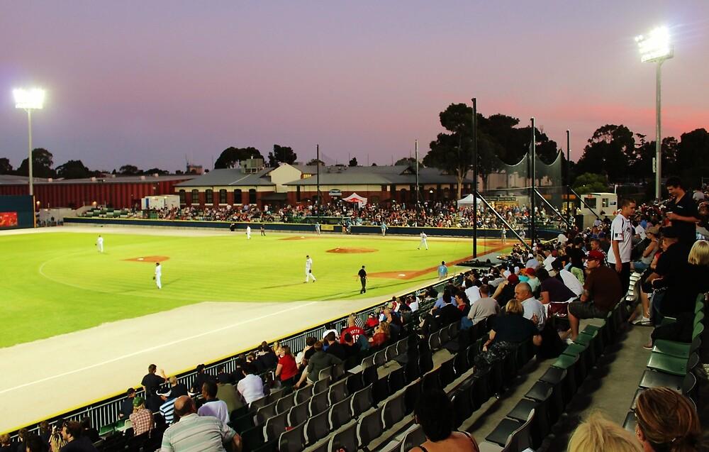 Baseball - Melbourne Aces Vs Sydney Bluesox, Dec. 2011 by brendanscully