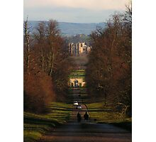 Ripon Cathedral from Studley Deer Park Photographic Print