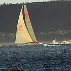 Wild Oats XI by phillip wise