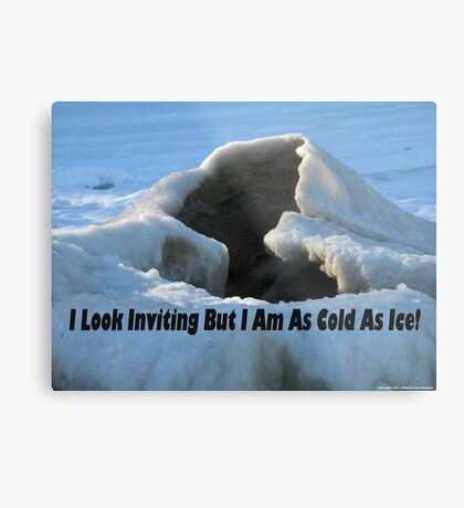 I look inviting but I am cold as ice. Metal Print