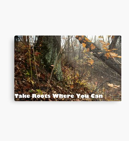 Take Roots Where You Can Metal Print