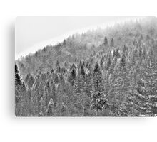 ❤❤❤ Gorce High Key . by Brown Sugar. Merry Christmas and Happy New Year 2013 ! Buy what you like ! Metal Print