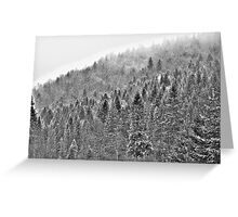 ❤❤❤ Gorce High Key . by Brown Sugar. Merry Christmas and Happy New Year 2013 ! Buy what you like ! Greeting Card