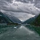 Glacial Approach by Michael  Moss