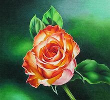 Rose that Glows by lanadi