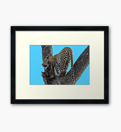 Great View ! Framed Print