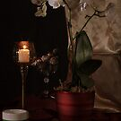 Orchid and Candle by FrankSchmidt