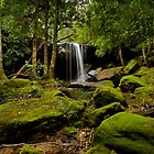 Oaklands Falls, Blue Mountains by Damian Gobbo