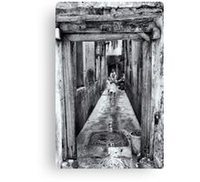 3 African Kids in Stone Town Canvas Print