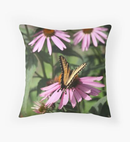 Echinacea with Butterfly 8835 Throw Pillow
