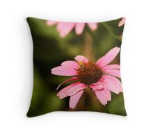 Echinacea with Bee 8674 Throw Pillow