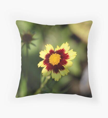 Calliopsis 6775 Throw Pillow