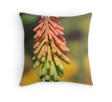6819 Throw Pillow