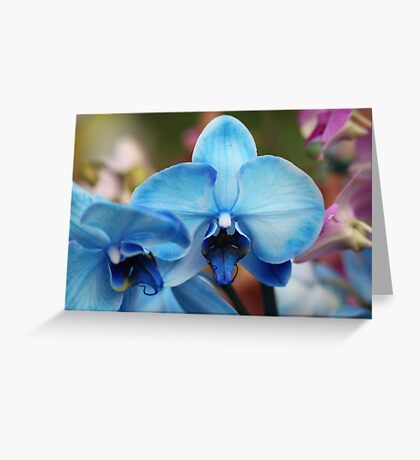 Blue Orchid 7053 Greeting Card