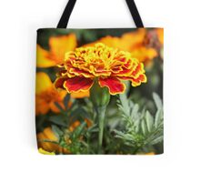 Marigold  Flower 7109 Tote Bag