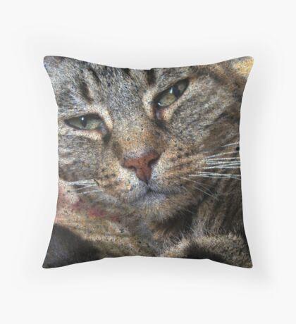 Tabby Cat Face Portrait Throw Pillow