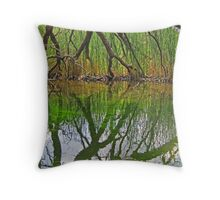 The Hand of God? Throw Pillow