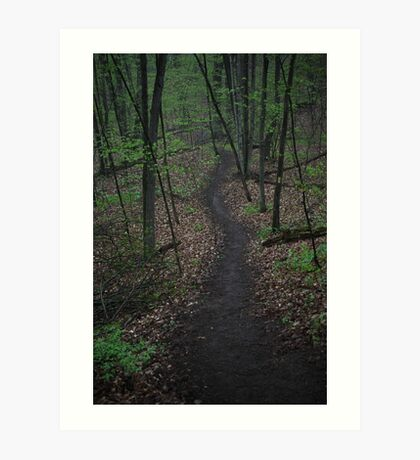 Ravine Trail 3310 Art Print