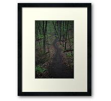Ravine Trail 3310 Framed Print