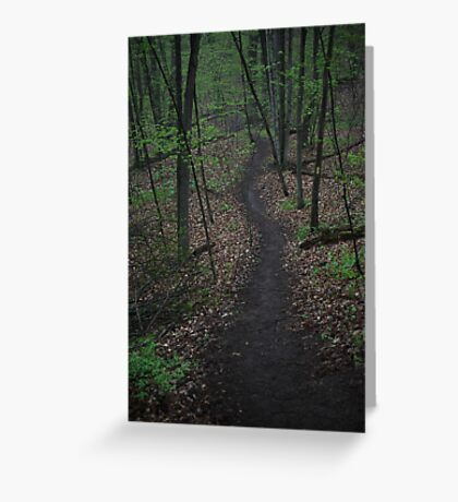 Ravine Trail 3310 Greeting Card