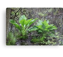 Ravine Trail Vegetation 3281 Metal Print