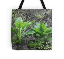 Ravine Trail Vegetation 3281 Tote Bag