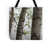 One Two Three Birch Tree 3238 Tote Bag