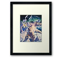 Arctic mysteries Framed Print