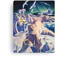 Arctic mysteries Canvas Print