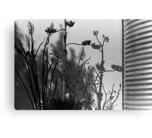 Shadows and Steel Canvas Print