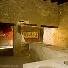 Thermopolium of Vetutius Placidus by Quixotegraphics