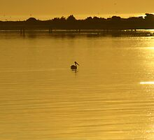 Serenity by RobsVisions