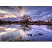 VioJet Sunset Photographic Print