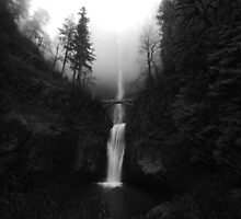 Multnomah Falls by Chaney Swiney