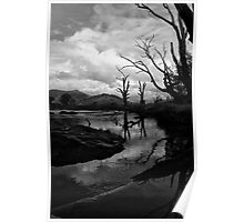 Mitta River, North East Victoria Poster
