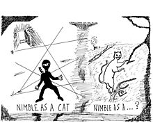 Nimble as a Cat ninja cartoon Photographic Print